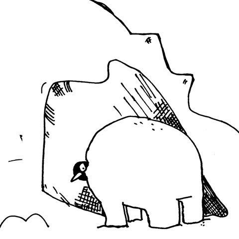 Bearguins 05