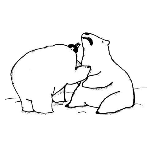 Bearguins 06