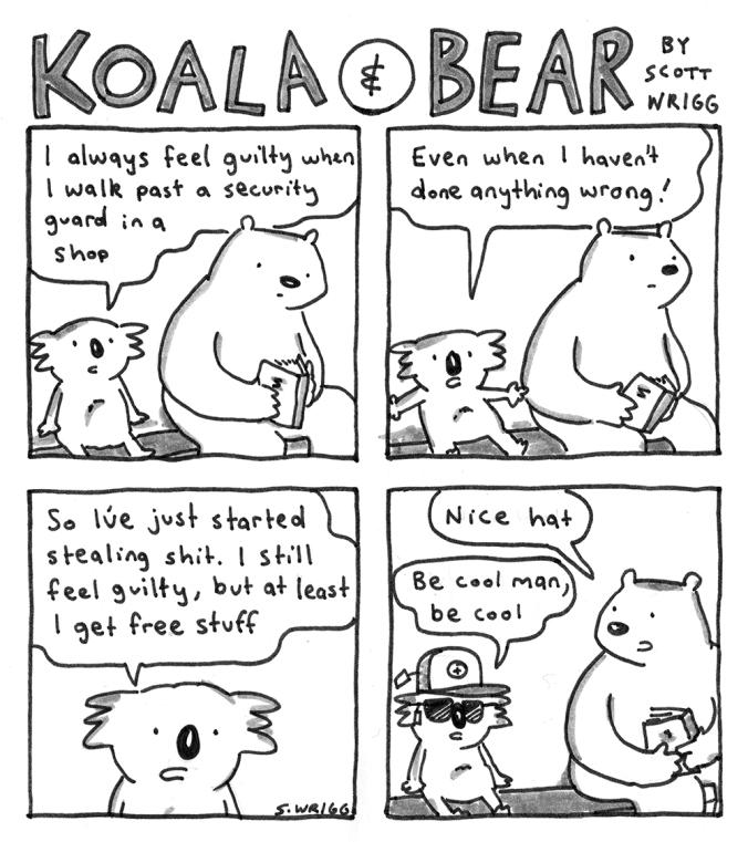 Koala And Bear Steal by Scott Wrigg