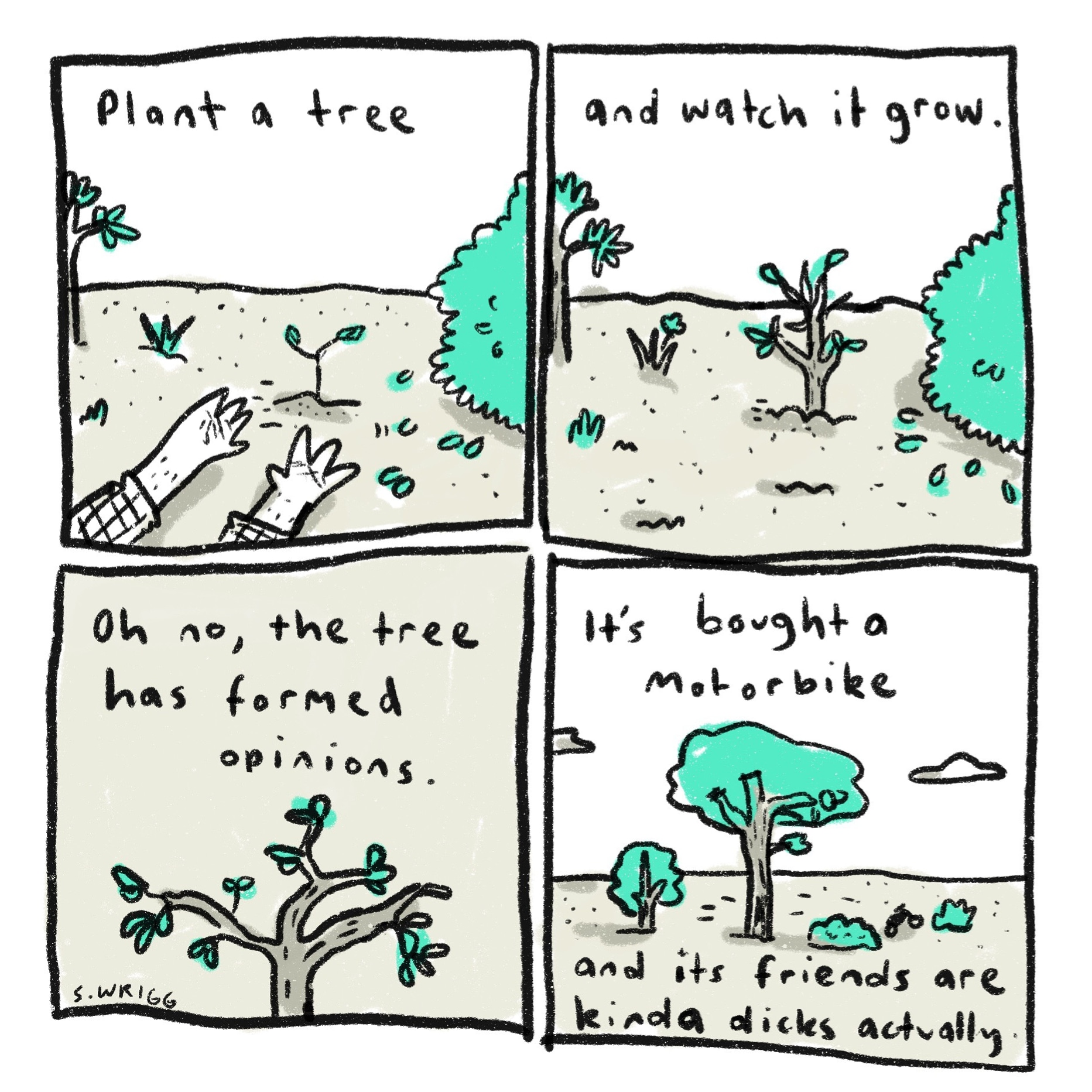 Plant a tree - scott wrigg